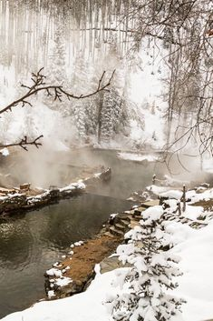 Strawberry Park Hot Springs (Steamboat Springs, Colorado)