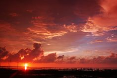 SUNSET in Gaomei Wetlands 高美濕地夕日  DSC_9665 - 銘俊