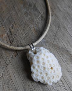Fossil Sponge Coral Surfer Necklace STOKED Sea by SeaFindDesigns