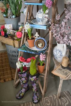 Spring on a ladder in the Potting Shed | Home is Where the Boat Is