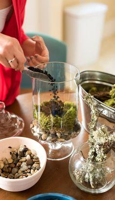 Learn how to make these beautiful mini-gardens at home   Washingtonan