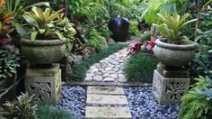 Image result for small tropical garden