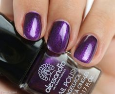Alessandro-Purple-Passion-Swatch