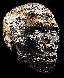 dayak skulls | human skulls head hunting human trophy skull Asmat Vanuatu Dayak ...