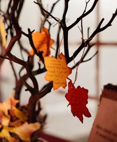 Fall Wedding in Illinois from Autumn and Melinda Photography Party Idea: Adapt this Wishing Tree to a Thanksgiving Tree Fall Wedding Centerpieces, Wedding Table, Our Wedding, Wedding Decorations, Fall Wedding Guests, Wedding Receptions, Wedding Themes, Autumn Party Decorations, Trendy Wedding