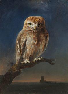 Conrad Wise Chapman (1842–1910), Owl.