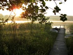 Lake view at sunset Beautiful Space, Life Is Beautiful, Pretty Pictures, Pretty Pics, Cottage In The Woods, Summer Romance, New Earth, Le Jolie, Summer Dream