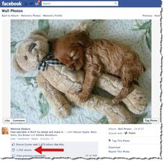 Mari Smith is the Queen of facebook and always shares great info. Here is another stellar article on facebook posts