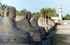 The avenue of human-headed sphinxes runs more than a mile, between the Temple of Luxor and the Temple of Karnak. A long, straight avenue like this is called a dromos. Most of this dromos remains buried under the modern city of Thebes. In this picture you can see the avenue runing beneath a Mosque in the distance.
