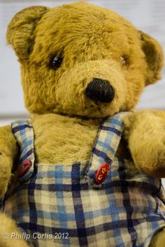 Alan Turing used to use this bear to practice his speeches. World History, World War Ii, Enigma Machine, Bletchley Park, Alan Turing, British History, Teddy Bears, Britain, Bears