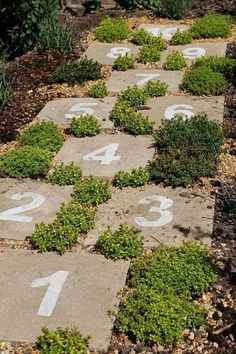 Hopscotch with Garden Pavers via Style Estate | Whimsical and Fun Backyards #backyardlandscaping #landscaping #diylandscaping #diybackyard #patio #garden #backyardideas #backyardmakeover #easybackyardideas Garden Paths, Garden Landscaping, Landscaping Ideas, Backyard Ideas, Garden Stones, Florida Landscaping, Garden Paving, Sensory Garden, Sensory Play