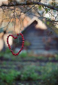 .corazon
