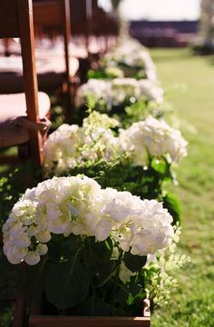 cute and cheap. potted plants set in wooden boxes to line the aisle. give plants away to helpers after the ceremony it is always nice to remember the ones who helped make your day special !!