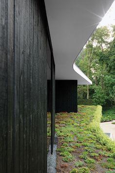 Architect: