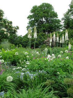 Tom Stuart-Smith, The Barn Garden Garden Landscape Design, Garden Landscaping, Smith Gardens, Garden Inspiration, Garden Ideas, Garden Pictures, Stuart Smith, Gras, Garden Gates