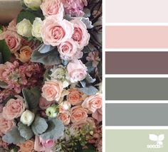 Design Seeds celebrate colors found in nature and the aesthetic of purposeful living. Design Seeds, Colour Pallette, Colour Schemes, Color Combinations, Autumn Color Palette, Color Balance, Color Swatches, Color Theory, House Colors