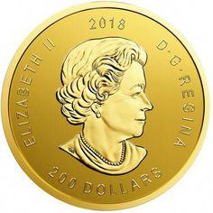 2013 $20 for $20  Santa Claus Christmas Commemorative .9999 Silver coin 1//4oz