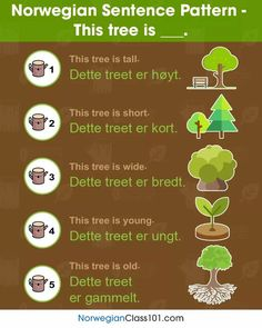 "Norwegian Sentence Pattern - ""This tree is. Chinese Sentences, French Sentences, Spanish Sentences, Arabic Sentences, Arabic Phrases, Learn Portuguese, Learn Turkish, Learn German, Learn French"