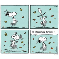 A snoopy dance to start your day.