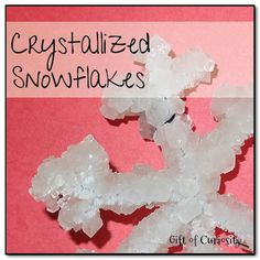crystalized snowflakes - if you haven't tried this, you must. Kids are amazed at the process & finished product