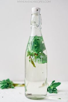How to Make Mint Extract Mint Extract, Fall Crafts, Origami, Craft Ideas, Make It Yourself, How To Make, Diy Ideas