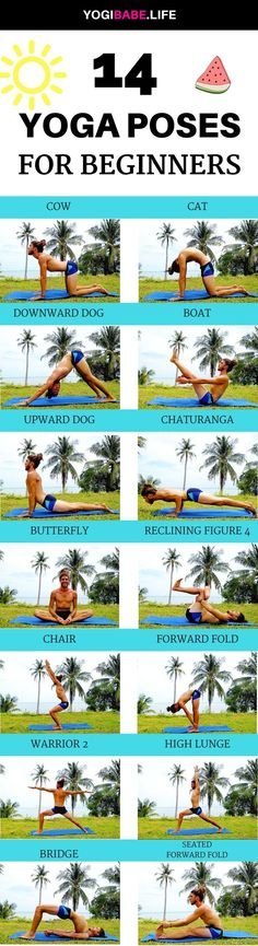 14 Yoga Poses For Beginners | If you're never done yoga before, joining a yoga class can be intimidating, especially when everyone else in the class seems super flexible.To make things worse, the yoga poses names sounds like gibberish…Utittha Trikonasana, Adho Mukha Svanasana.. To help you and other beginners I created a list of 14 basic and common yoga poses you can start to practice at home, learn their names and how they should looks like.