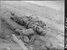 ▲ 1951. 5. 25. 길바닥에 나뒹구는 중공군 시신