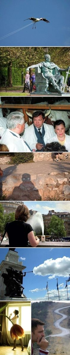 Pictures From Perfect Angles - funny pictures - funny photos - funny images - funny pics - funny quotes - funny animals @ humor