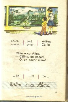 Calin e cu Alina Vintage School, Socialism, My Memory, Old Pictures, Childhood Memories, Nostalgia, Preschool, Parenting, Learning