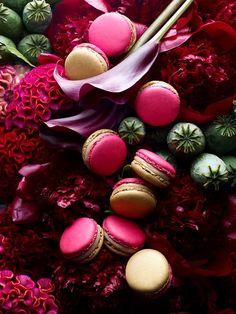 Macaron beauty