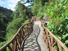 walkway at LA PAZ, Costa Rica...been to Costa Rica and loved it & ready to go back again,...hopefully to this place!!:-D