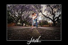 Engagement session with Jacaranda trees Jacaranda Trees, Wedding Images, Railroad Tracks, Engagement Session, Country Roads, Weddings, Photography, Photograph, Wedding