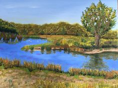 Cherry Creek State Park, CO. Oil on Canvas
