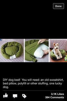 DIY Doggie Bed!