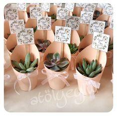 Resultado de imagem para succulent wedding favors