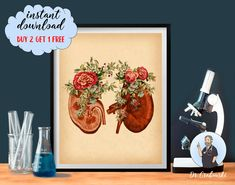 Vintage Anatomy Print Floral Kidneys Art Urinary System Decor   Etsy Medicine Illustration, Anatomy Art, Human Anatomy, Art Psychology, Systems Art, Doctor Gifts, Medical Art, Endocrine System