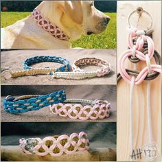 PARACORD dog COLLAR ☆ with 'DOUBLE KBK BAR' knot and three colours of paracord. Very simple but very effective.♡