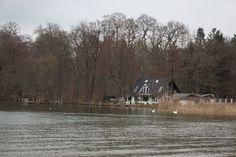 Zusammenarbeit mit dem NABU Schwerin für die Kraniche | Frühling am Zippendorfer Strand (c) Frank Koebsch (2)