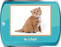 SImple site with vocabulary and image.  CLick on the words and they are read in french, click on the image and you hear the sounds the animal makes.  Several themes including shapes, school, food, weather, opposites.