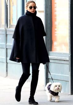 olivia-dog-roxo