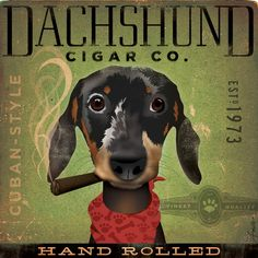 Dachshund Cigar company original graphic dog art illustration signed artist giclee archival print by Stephen Fowler Pick A Size
