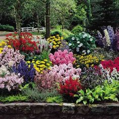 Perennials-would love my garden to look like this!