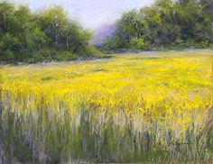 "The Goldenrod#2 by Kathy McDonnell Pastel ~ 11"" x 14"""