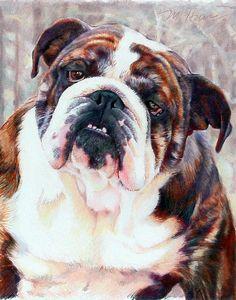 English Bulldogs French Bulldog and Rottweiler various by MargiH, $50.00