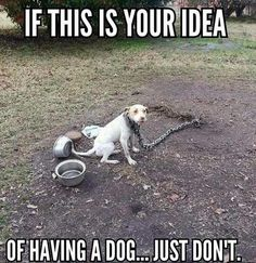 Dogs  DO NOT belong on a tethered leash!!! The ONLY leash that is allowed is for taking them a walk!!!