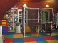 Soo want a walk in cage for my sugar gliders! Would be awesome Sugar Glider Toys, Sugar Glider Cage, Sugar Gliders, Sugar Glider Habitat, Rat Toys, Bird Toys, Sugar Bears, Animal Room, Parrot Toys