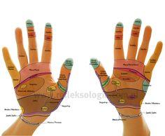 mapa dłoni