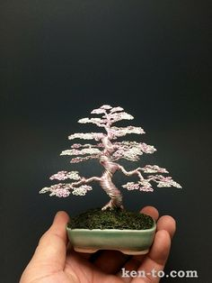 Exhibition grade rose silver wire bonsai tree by Ken To 90130151