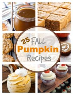 25 Fall Pumpkin Recipes via PinkWhen.com
