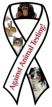 Let us speak out against the unbelievable cruel treatment animals are forced to endure. Every second of every day, an animal dies in laboratory testing. EVERY SECOND!